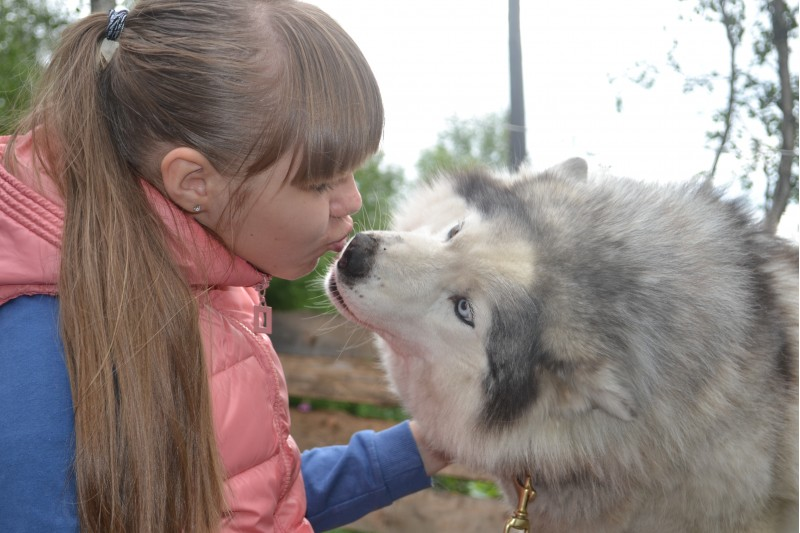 Веселовская и собака цем цем